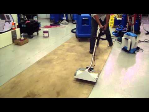 Santoemma Carpet Cleaning