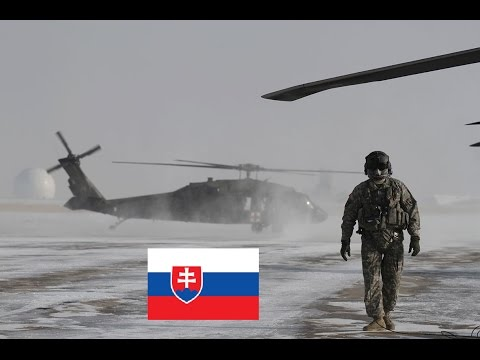 Slovak Army in One Minute