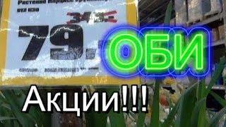ОБИ Обзор для ЦВЕТОМАНОВ  Obi Огромный ВЫБОР 2019 Орхидея