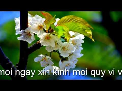 PGHH ( Hoang Minh ) tìm hiểu ( Phat Giao Hoa Hao )
