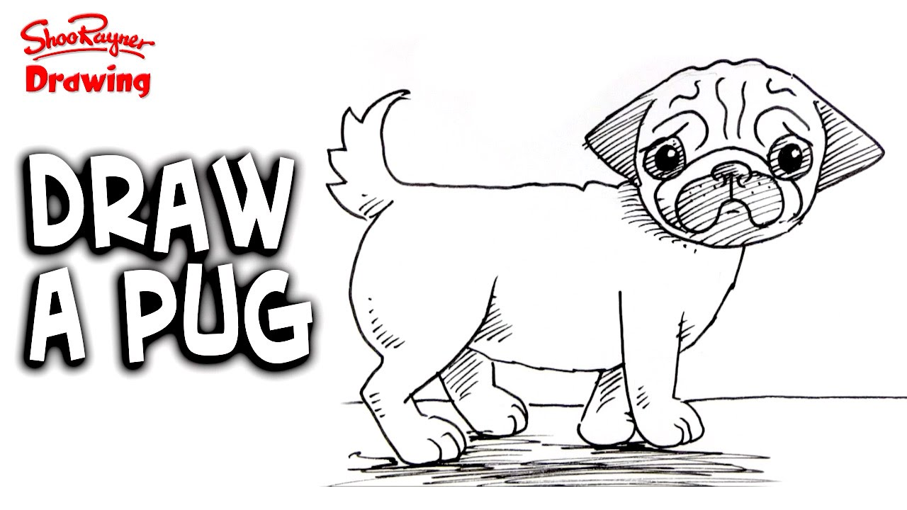 how to draw a cartoon pug how to draw a pug easy step by step for beginners 133