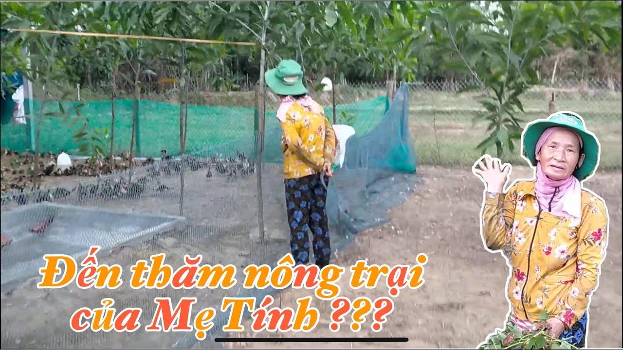 Tham quan một vòng nông trại nuôi vịt của Mẹ Tính ??? 😱