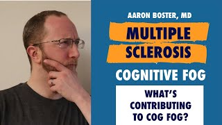 Multiple Sclerosis and Cog Fog (aka cognitive fatigue): What's contributing to it?