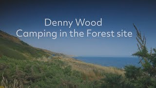 Denny Wood Camping in the Forest site