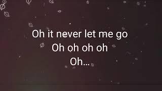 Baixar Never Let Me Go  -  Alok, Zeeba (letra)