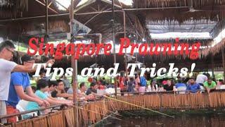 Singapore Prawn Fishing - Tips & Tricks