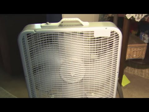 bdf6e6109cc83 UK News: Fans under £20 that are sure to see you through the heatwave -  PressFrom - United Kingdom