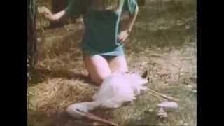 Смотреть клип Pompeya - Lazy