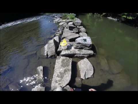 Fish Creek Fishing