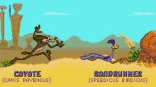 Desert Demolition Starring Road Runner and Wile E. Coyote (Genesis) Playthrough - NintendoComplete