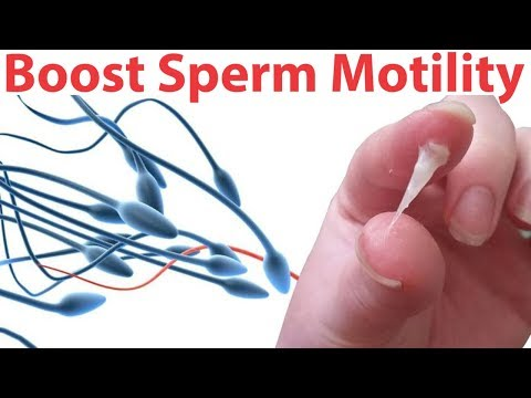 foods-to-increase-male-fertility-|-solution-of-male-infertility-|-ways-to-increase-male-fertility