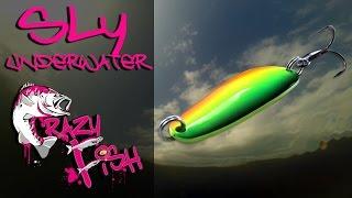 Приманки под водой. Crazy Fish. Sly. Underwater.