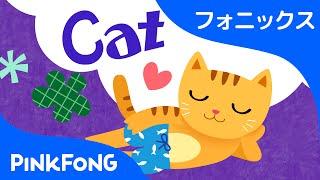 Cat | フォニックス読みC | ABCフォニックスの歌 | ピンクフォン英語童謡