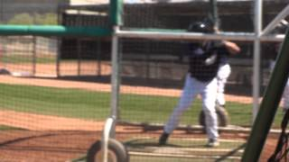 Jace Peterson - San Diego Padres - SS