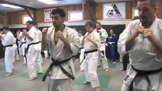 Saratog Kyokushin and Alliance Jiu-Jitsu:  Kigami Baraki 2013