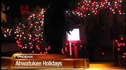 Community enjoys big light display at Ahwatukee home