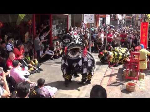 Lion dance at Melbourne China town Luna New Year Festival 14-02-2016