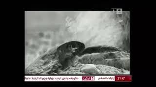 زمزم(الشيخ محمد سيد حاج رحمه الله)