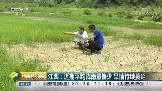 [中国财经报道]江西:近期平均降雨量偏少 旱情持续蔓延  CCTV财经