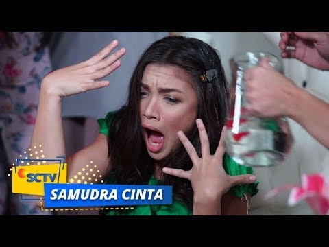 Highlight Samudra Cinta Episode 257 Dan 258 Youtube