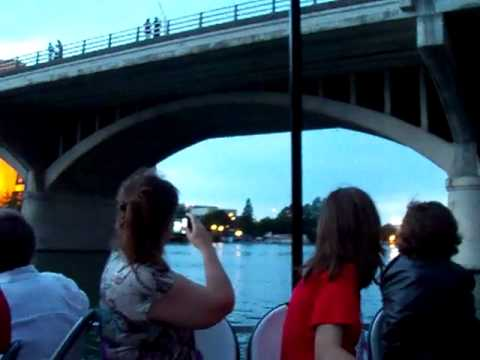 Austin Bats Congress Bridge May 2011