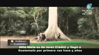 """""""Andaluces por el Mundo"""" desde Guatemala. Emitido el 01-08-2013"""