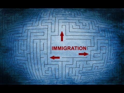 Navigating the H 1B Maze