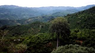 Coffee Travel: Hacienda La Minita, Costa Rica