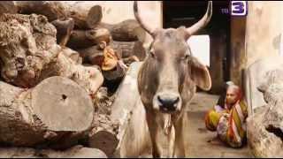 Индийские гуру,садху и аватары(Индийские гуру, садху и аватары - кто они? Учителя, наставники и целители, через которых являет себя бог...., 2015-03-03T11:20:32.000Z)