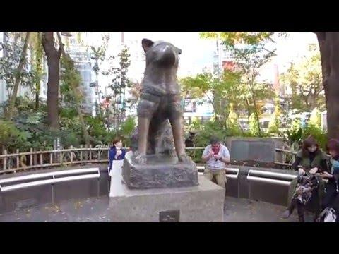 Tokyo, Japan - Hachikō Statue HD (2015)