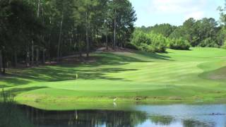 Mississippi Golf (Dancing Rabbit to the True South Classic)