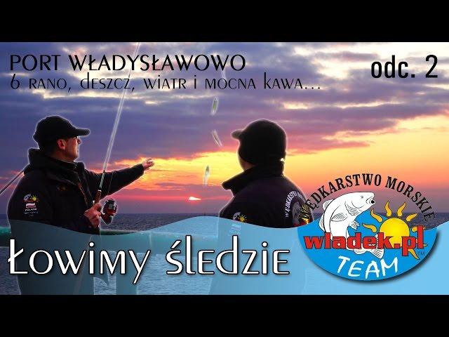 WładekTV - Łowimy ŚLEDZIE z wladek.pl TEAM o wschodzie słońca (odc.2)