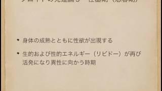 フロイトの発達論5 性器期【心理カウンセラーたかむれ】