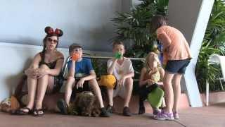 A Standard Disney World Trip