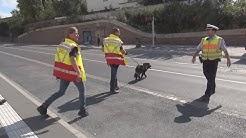 Vermisstensuche mit Personensuchhunden nach Senior in Köln-Porz am 11.09.2014 + O-Töne