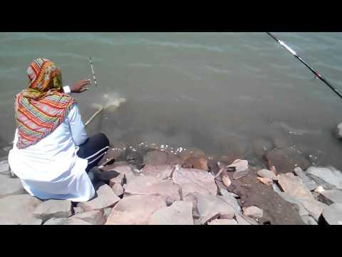 Singur dam fishing Amberpet Angalers