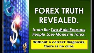 外匯贏家 Forex Winner Trend Trading