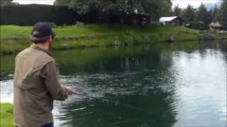 tcnicas para pesca de trucha jig head batracio wasp baits