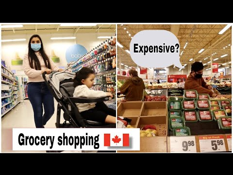 I Went Grocery Shopping After 6 Months | Price Of Grocery Items In Canada