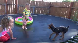 Дети прыгают на батуте с Гонщиком.