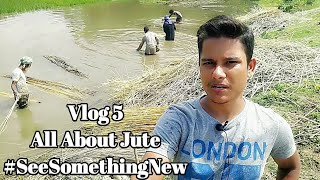 LunaticApps Vlog 5: All about Jute Crop   Jute Farming   Jute Production   Jute Bag #SeeSomethingNew