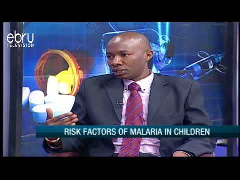 Factors That Contribute To One Infecting Malaria