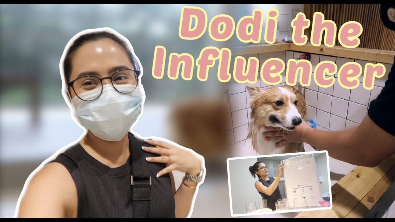 Favorite Home Disinfectant + Cardo the Influencer | Anna Cay ♥