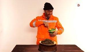 Естественный отбор (ТВЦ) Морская капуста: польза и вред