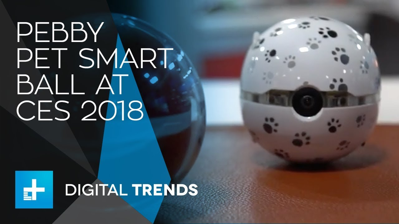 Pebby Pet Smart Ball at CES 2018