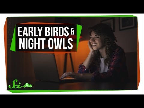 What Being a Night Owl Does to Your Health | SciShow News