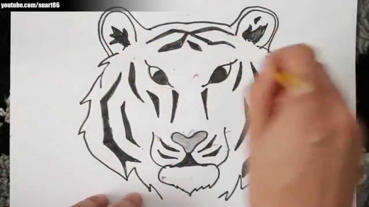 Dibujos De Caras De Tigres Para Colorear: Como Dibujar Un Tigre Paso A Paso