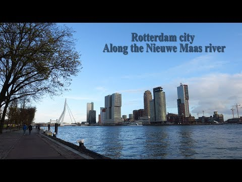 The Netherlands : Rotterdam city - Along the river Nieuwe Maas