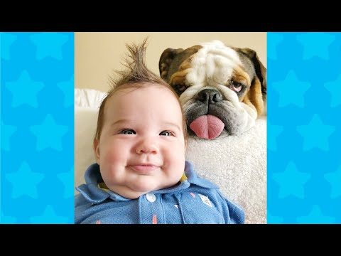 Dogs Playing and Arguing With Baby #3 ★ Dog Loves Baby Videos