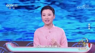 [中国诗词大会]雪泥鸿爪 见证苏轼苏辙兄弟情深| CCTV